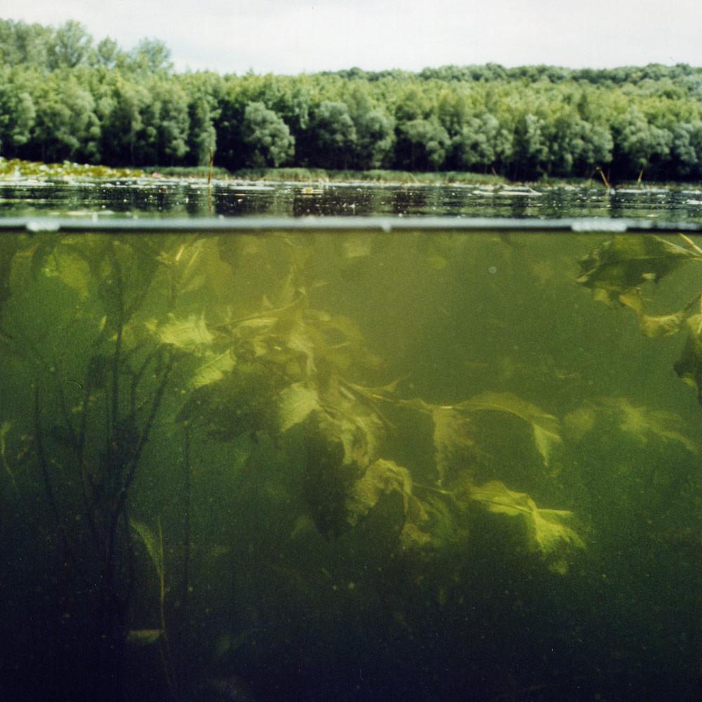 Klaus Osterwald – Donatussee, Unterwasser-Tonaufnahmen, Soundscapes
